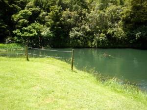 Bad im Fluß