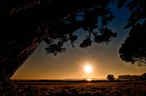 Sonnenaufgang am Orewa Beach